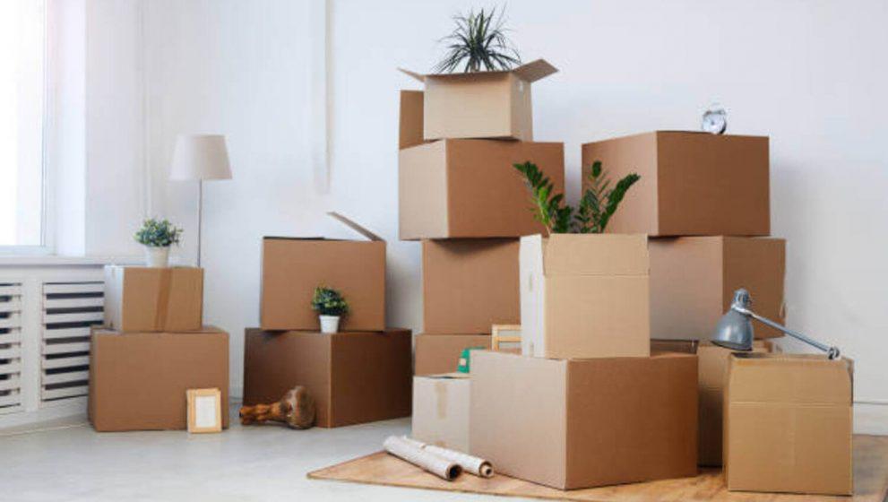 DIY Move vs. Hiring Professional Local Movers